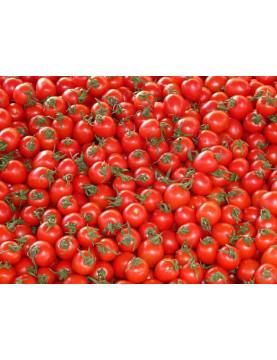 Pomidory z czosnkiem i bazylią 1kg